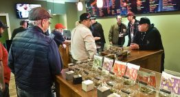 Finding out all about marijuana dispensary